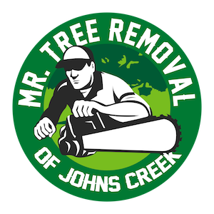 Mr Tree Removal of Johns Creek